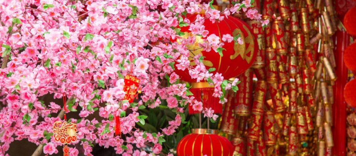 Chinese New Year Celebration in China - Teach English with Pioneer and Beyond (3)