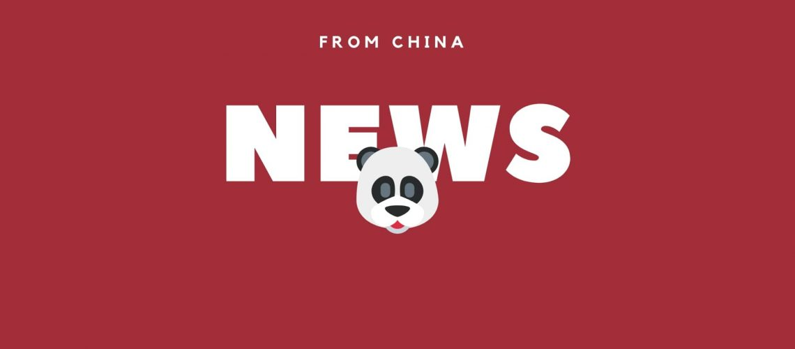News from China Pandas excited by first snow! Teach English in China